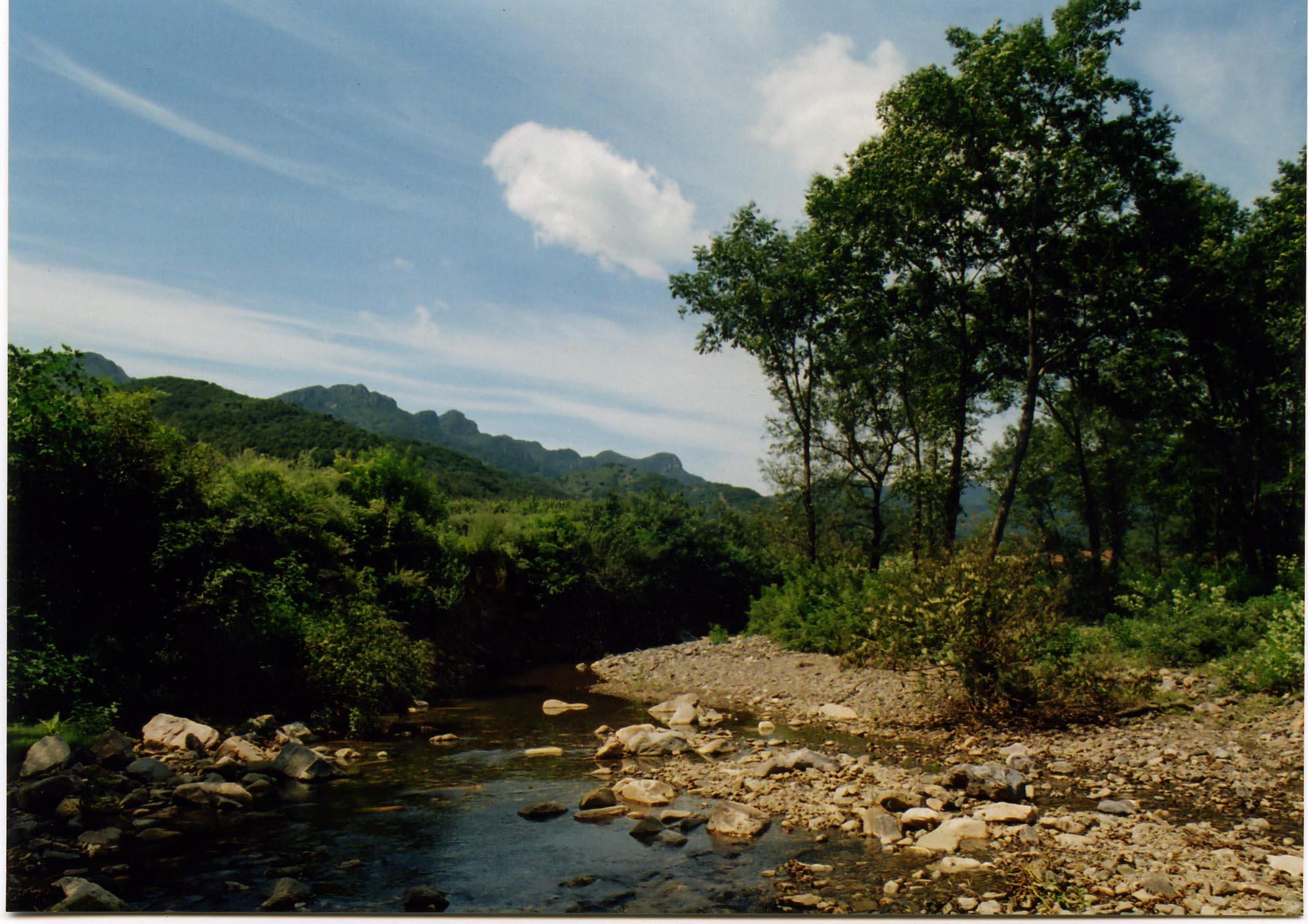 凤鸣谷森林公园位遂平县境内,地处伏牛山东缘余脉,总面积25平方公里,是以奇特的自然风景为主体,以悠久的历史文化为内涵,以淳朴的民俗风情为特色,融休闲、探险、猎奇、科学考察为一体的综合型景区。   凤鸣谷森林公园处于亚热带向暖温带的过渡地和南北动植物的交汇地,动植物资源极其丰富,森林覆盖率达95%以上。凤鸣谷常年降雨充沛,流水潺潺,非常适合动植物的生长,谷中古木参天,盘根错节,奇花异草,四季漂香。有各种林木近千种,中草药材120多种,野生动物50多种,林、果、花、草应有尽有,鸟、兽、蝶、鱼来往出没,瀑、